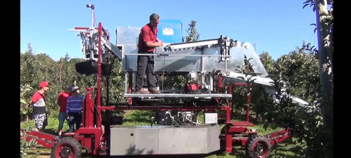 Photo of an apple harvesting infield sorting prototype